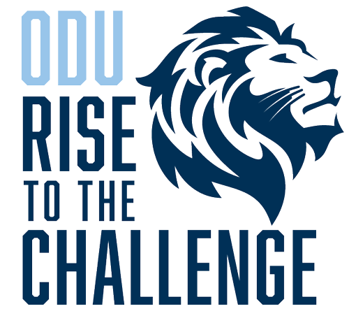 lion 1 rise to the challenge